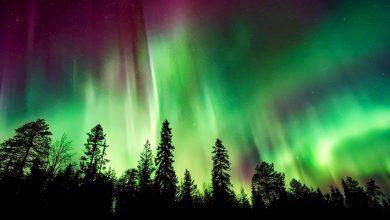 Photo of Северное сияние онлайн, трансляция с веб-камер